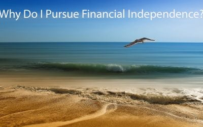 Why Do I Pursue Financial Independence?